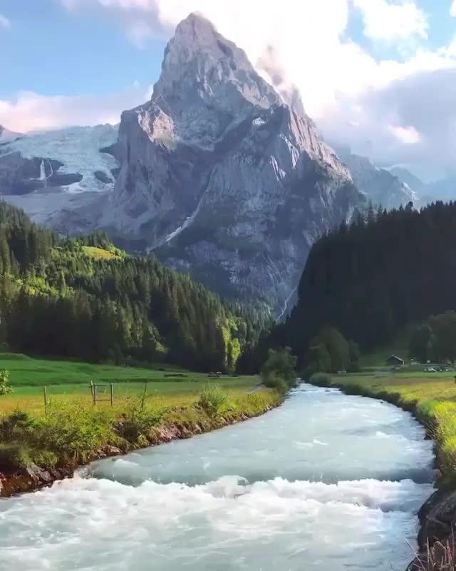 Watch and share Nature GIFs by mayaxs on Gfycat