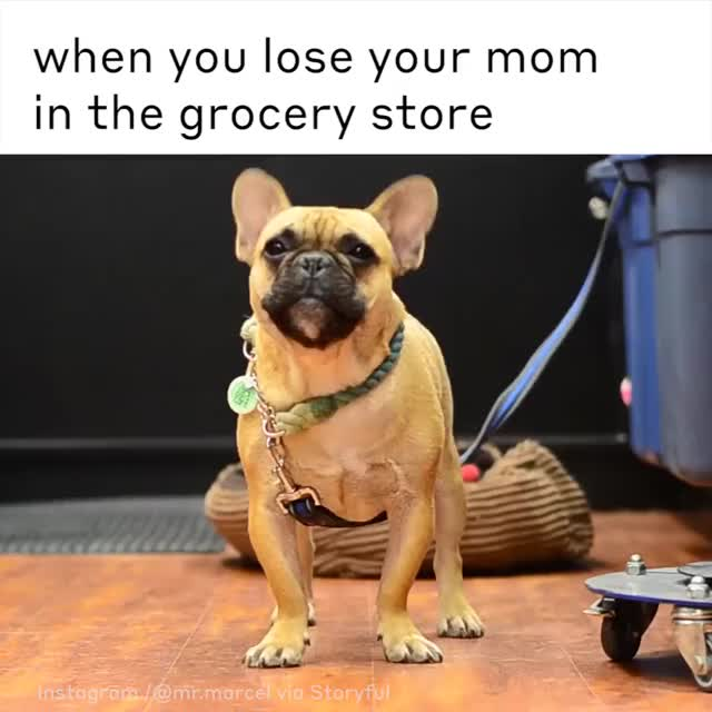 When you lose you mom in grocery store