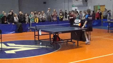 Watch and share Ping Pong GIFs on Gfycat