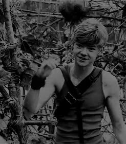 Watch teresa GIF on Gfycat. Discover more Thomas Brodie-Sangster, ch: newt, gifs*, m: the maze runner, my sweet baby, tbsedit, the maze runner, tmredit GIFs on Gfycat