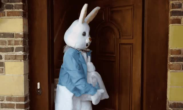 Watch this bunny GIF by GIF Queen (@ioanna) on Gfycat. Discover more are, bunny, confused, easter, eggs, happy, happy easter, house, lele, of, out, pons, rabbit, stood, the, up, wait, waiting, where, you GIFs on Gfycat