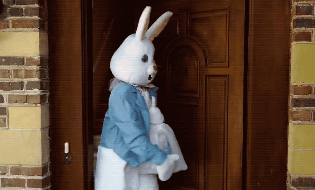 are, bunny, confused, easter, eggs, happy, happy easter, house, lele, of, out, pons, rabbit, stood, the, up, wait, waiting, where, you, Easter bunny is Lele Pons GIFs