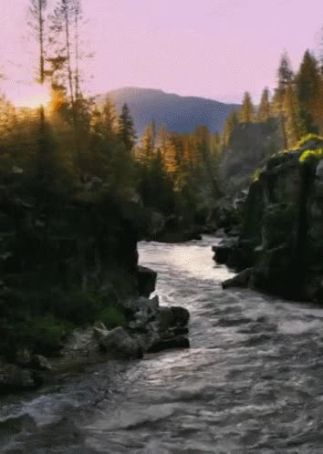 Watch and share Creek Form GIFs on Gfycat