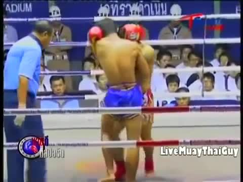 muaythai, [GIF] Vicious Elbow KO from the Clinch (reddit) GIFs