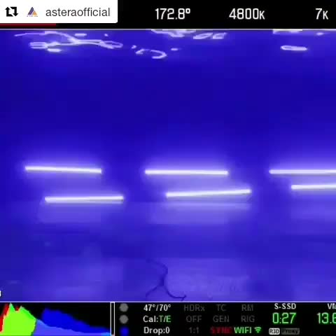 Watch and share Helios Tube Astera UnderWater GIFs on Gfycat