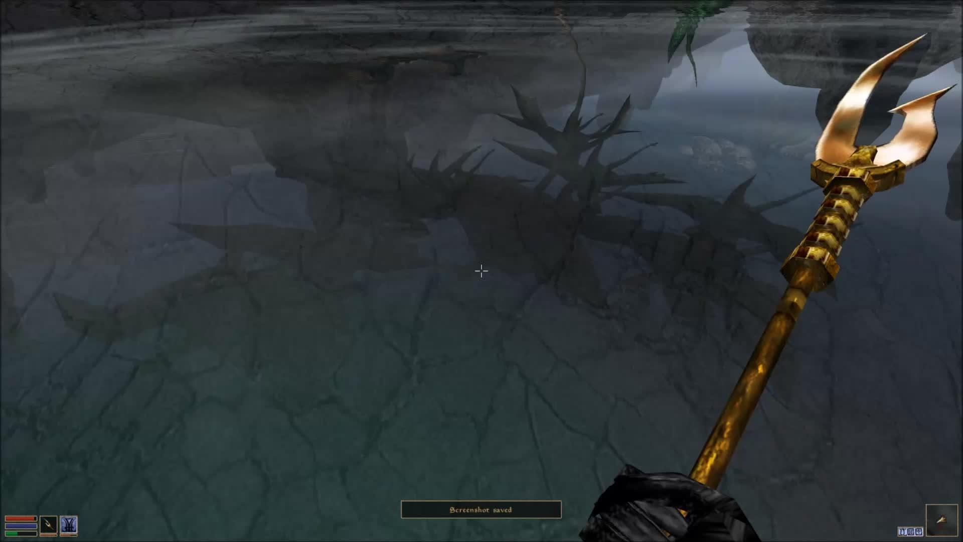 Elder Scrolls III Morrowind, *Angry Cliff Racer Noises* GIFs
