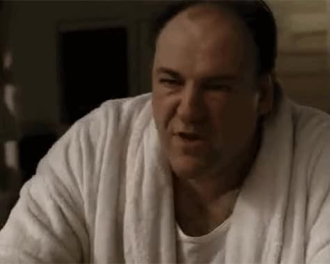 Watch and share Tony Soprano GIFs on Gfycat