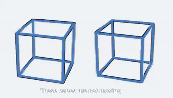 Watch and share These Cubes Are Stationary GIFs by Mahmoud M. Mahdali on Gfycat