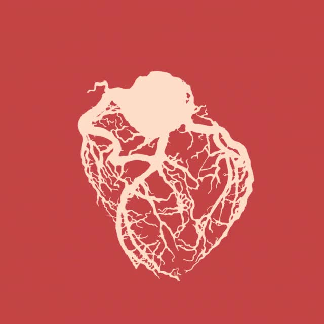 Watch this heartbeat GIF on Gfycat. Discover more related GIFs on Gfycat