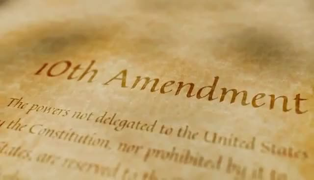 Watch and share The 10th Amendment In One Lesson GIFs on Gfycat