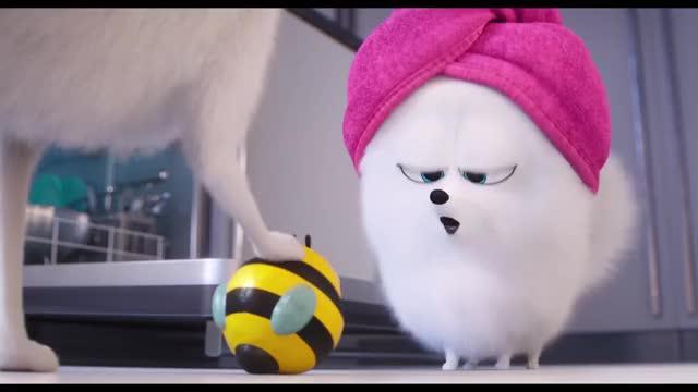 Watch and share Confira O Novo Trailer De Pets Que Estreia Em 27 De Junho. GIFs by Diamond Garden on Gfycat