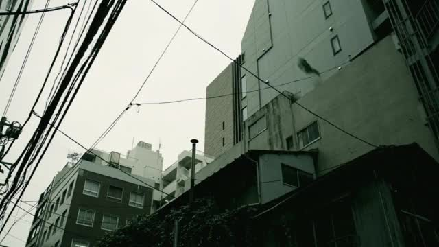 Watch and share Omega Parkour GIFs by ChaseBrave on Gfycat