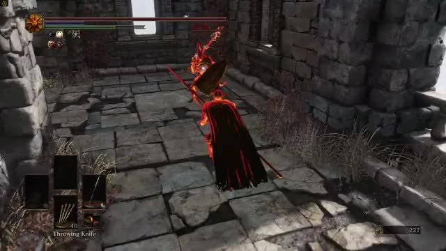 Watch and share DS3 Arena PvP GIFs by iwannabeatiger on Gfycat