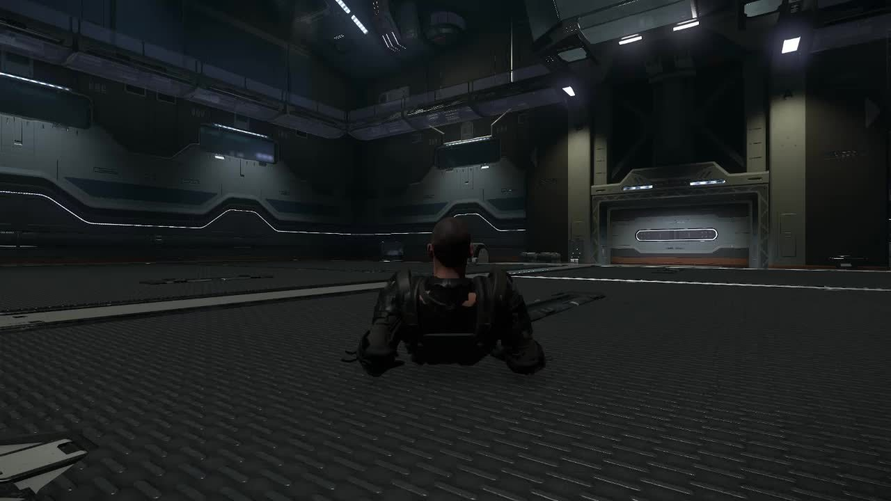 starcitizen, Butt slide GIFs