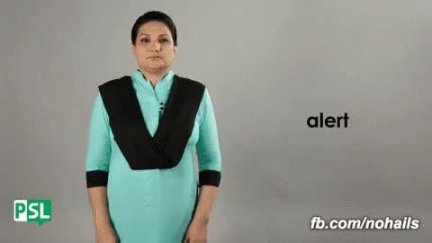 Watch and share Alert Pakistan GIFs on Gfycat