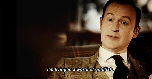 Watch END GIF on Gfycat. Discover more mark gatiss GIFs on Gfycat