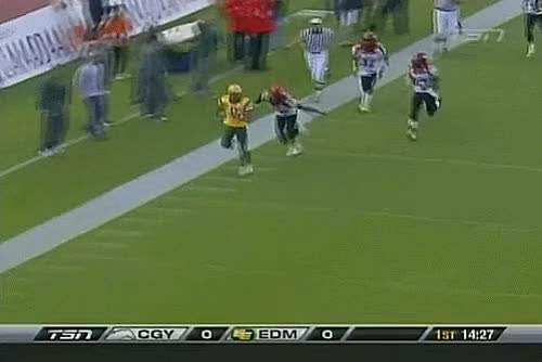 Watch and share Kamau Petersen GIFs and Stampeders GIFs by Archley on Gfycat