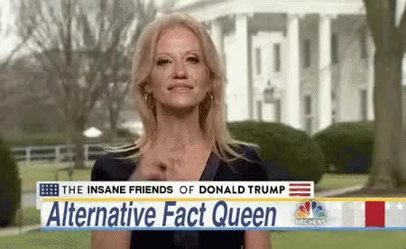 Watch Alternative Facts GIF on Gfycat. Discover more kellyanne conway GIFs on Gfycat
