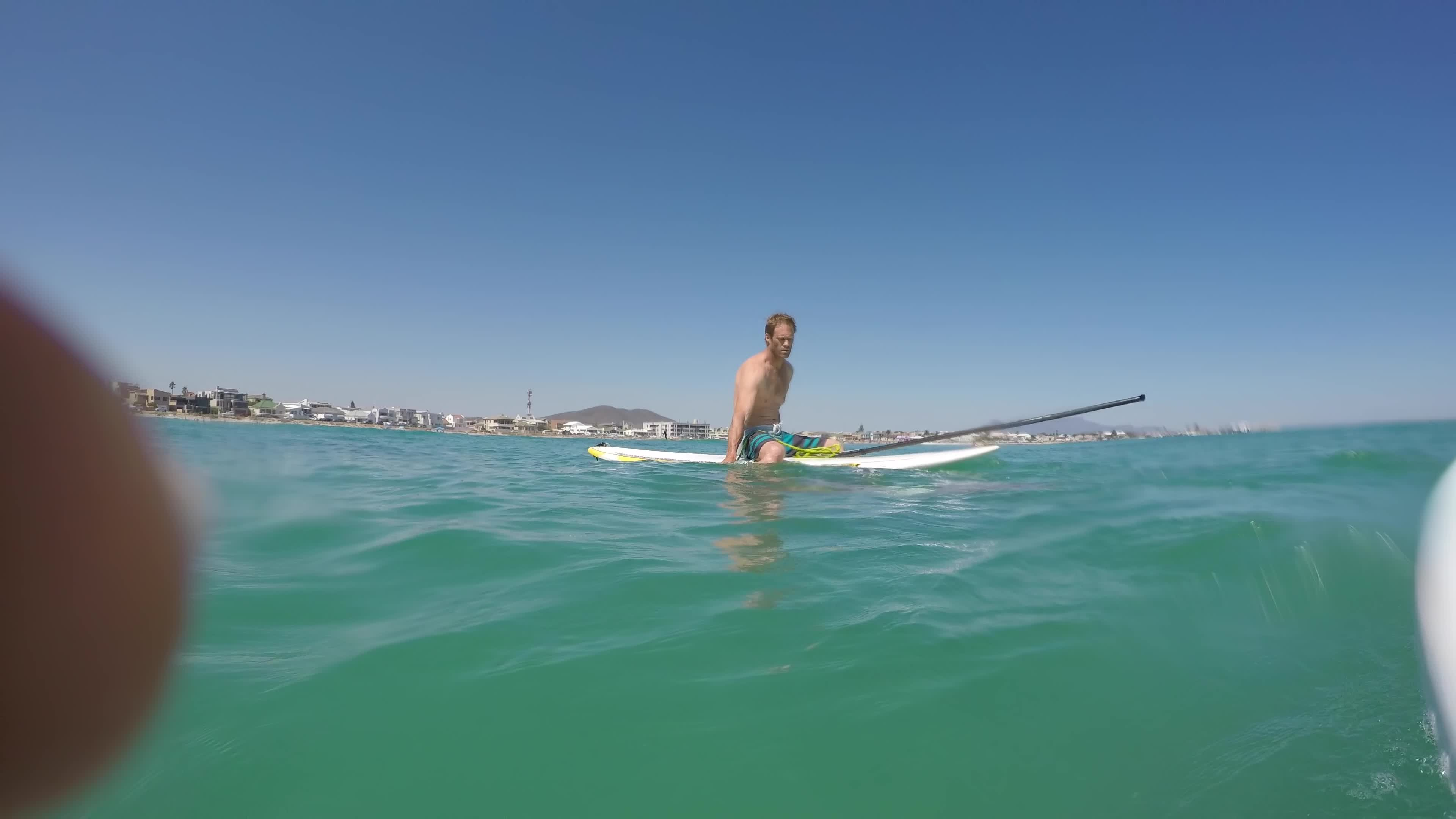 James Taylor, Sports, amazing, cape town, giant squid, incredible, kraken, melkbosstrand, ocean, paddle board, sup, surf, weird animals, Giant squid wraps its tentacles around my paddle board! GIFs