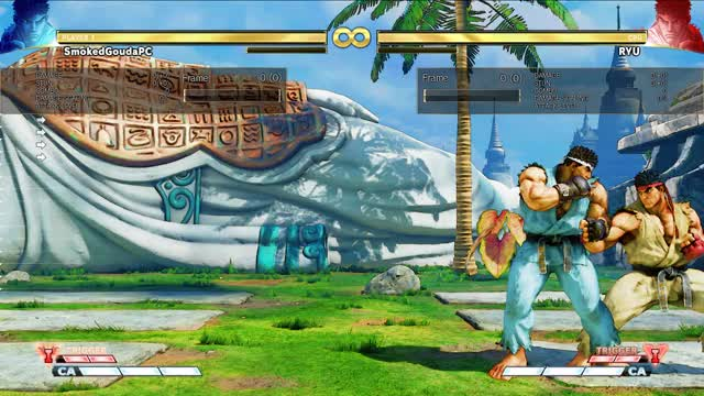 Watch and share OS V-Rev Parry Punish GIFs by smokedgouda on Gfycat