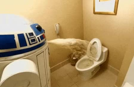 Watch toilet GIF on Gfycat. Discover more toilet GIFs on Gfycat