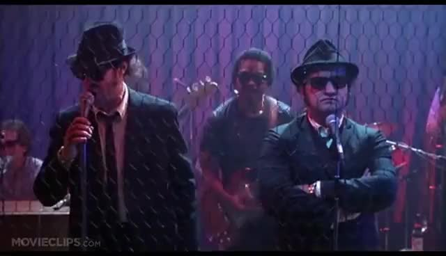 Watch and share Blues Brothers GIFs on Gfycat