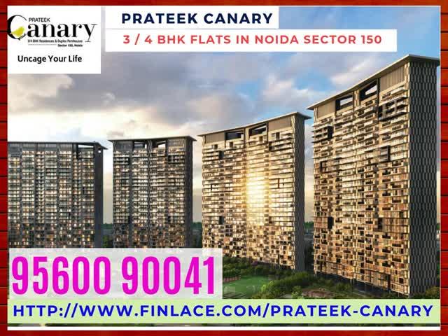 Watch and share Prateek Canary Noida GIFs on Gfycat
