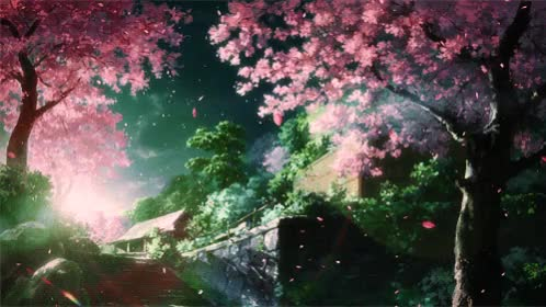 Watch [Kotonoha no Niwa] Cherry Blossoms GIF on Gfycat. Discover more related GIFs on Gfycat