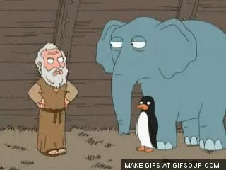 Watch and share Noah's Ark  - Family Guy GIFs on Gfycat