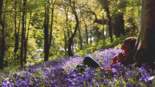 Watch and share Nature Spring Flower Relax GIFs on Gfycat
