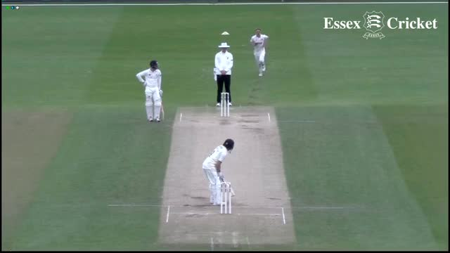 Watch and share Jamie Porter Wicket Compilation May 2016 GIFs on Gfycat