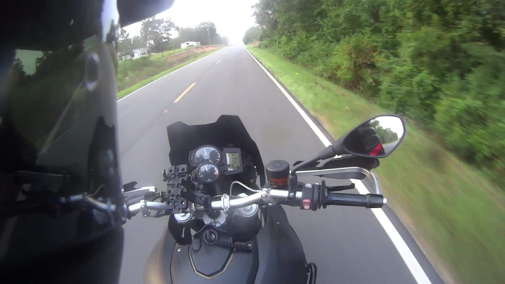 motorcycles, Suicidal Bird GIFs