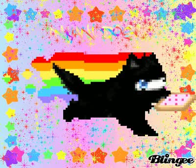 Watch and share Nyan Cat Images Nya Dog?! Wallpaper And Background Photos GIFs on Gfycat