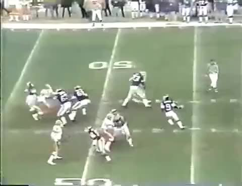 Watch and share Mn Vikings GIFs on Gfycat