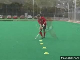 Watch 🏑 field hockey GIF on Gfycat. Discover more related GIFs on Gfycat