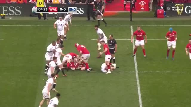 Watch and share Rugby GIFs by The Livery of GIFs on Gfycat