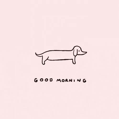 Watch and share Morning GIFs and Good GIFs on Gfycat