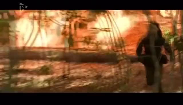 Watch and share Run Bro Run GIFs and Katniss GIFs on Gfycat