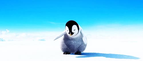 Watch and share Penguins Hea GIFs on Gfycat