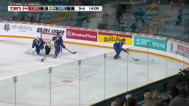 Watch and share Canada GIFs and Sweden GIFs by cultofhockey on Gfycat