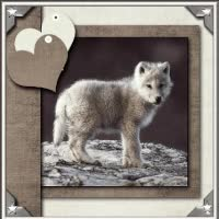 Watch WOLF PUP GIF on Gfycat. Discover more related GIFs on Gfycat