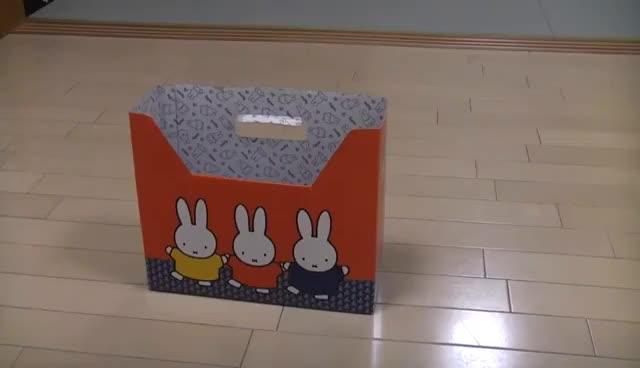 Watch Maru box GIF on Gfycat. Discover more Maru, box GIFs on Gfycat