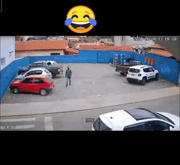 hit and run by dog