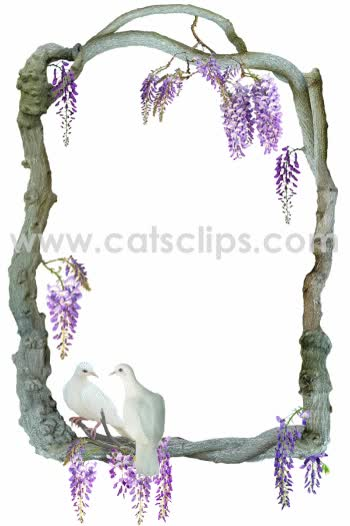 Watch and share Doves In Wisteria Animated Border GIFs on Gfycat