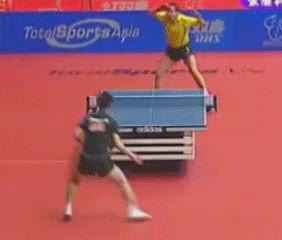 Watch and share Table Tennis GIFs on Gfycat