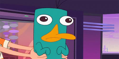 Watch and share Perry The Platypus GIFs on Gfycat
