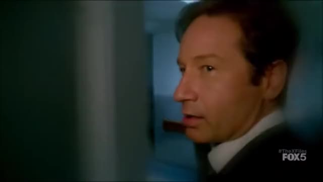 Watch and share X Files GIFs and Funny GIFs on Gfycat