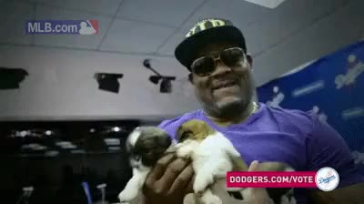 Watch and share Uribe Puppies GIFs on Gfycat