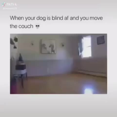 Watch and share Mhh - Unexpected GIFs on Gfycat