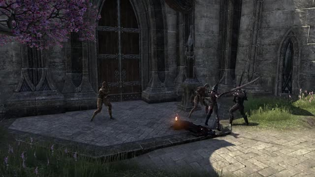 Watch and share Vlc-record-2018-06-23-11h20m59s-Elder Scrolls Online- GIFs on Gfycat